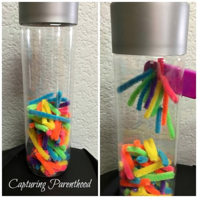 Magnetic Pipe Cleaners Sensory Bottle